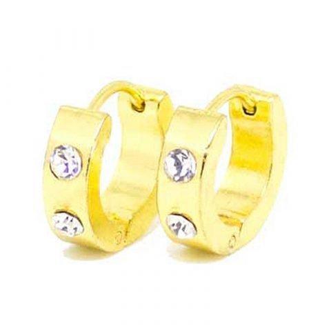 Stalen creolen oorbellen met twee zirkonia goudkleurig